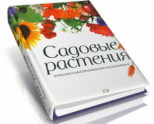 Книга Садові рослини. Велика ілюстрована енциклопедія. Автори - Виллери Д., Гарбе П. (Ексмо)
