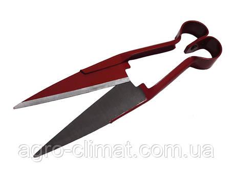 Ножиці для стрижки овець, фото 2