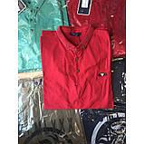 Мужская футболка Gelix 935 красная, фото 4