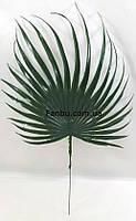 Штучний круглий лист пальми 40*25см,пластиковий темно зелений, фото 1