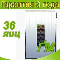 Инкубатор промышленный Тандем Страус-36