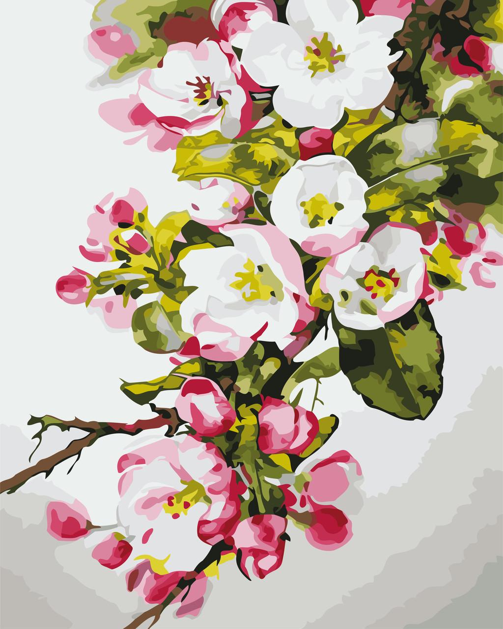 Рисование по номерам Вишнёвый цвет ArtStory AS0664 40 х 50 см