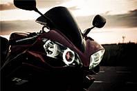Ангельские глазки на мотоцикл—белые