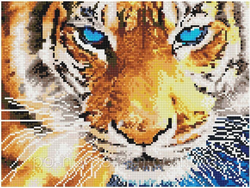 Алмазная вышивка Никитошка Голубоглазый тигр (EJ496) 30 х 40 см (На подрамнике)