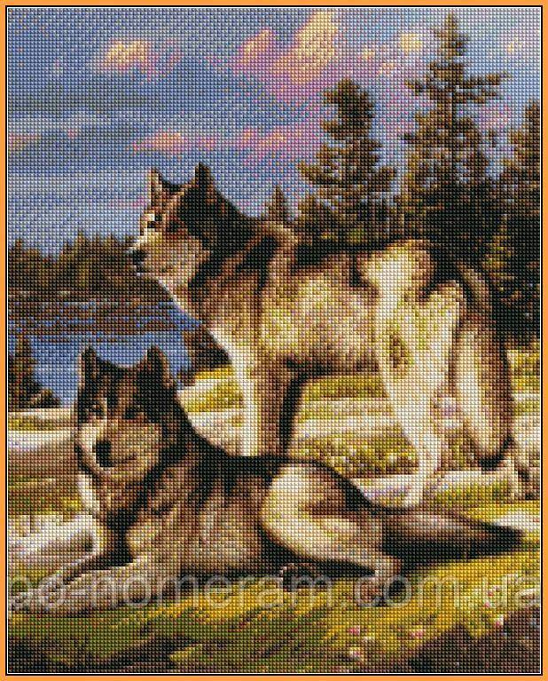 Алмазная живопись Babylon Пара волков (ST1131) 40 х 50 см (На подрамнике)