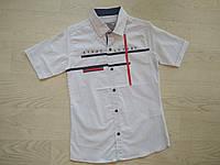 Рубашка для мальчика ТМ Ayugi  р. 140