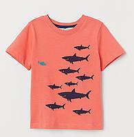 Коралловая футболка с принтом для мальчика, H&M, 0697813035