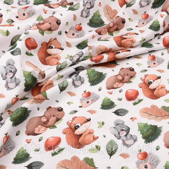 """Хлопок с цифровой печатью """"Белки и медведи, ёлки и грибы"""" на белом № 2278"""