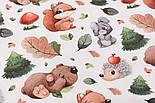"""Хлопок с цифровой печатью """"Белки и медведи, ёлки и грибы"""" на белом № 2278, фото 5"""