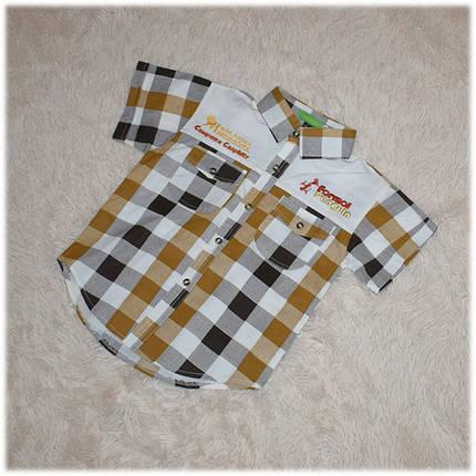 Рубашка детская на мальчика в клетку с коротким рукавом размер 110 116, фото 2