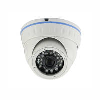 Гибридная металлическая купольная мегапиксельная AHD/CCTV камера видеонаблюдения (модель LIRDNAD100)