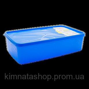 Бокс для морозильної камери 2,1 л прямокутний Alaska синій