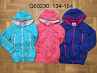Куртки для девочек оптом, Grace, 134-164 рр.
