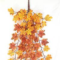 Куст клен оранжевый осенний  97 см.