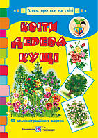 НУШ Демонстрационные карточки Пiдручники i посiбники Цветы деревья кусты