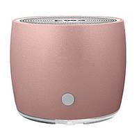 Колонка Bluetooth EWA A103 Rose Gold