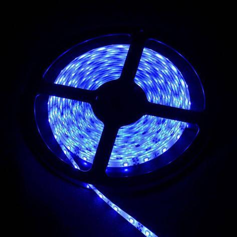 SMD 3528 светодиодная лента 5м Blue 300 диодов, фото 2