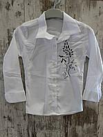 Рубашки для девочек (школа). Размер от 9-12 лет.