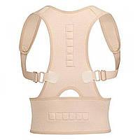 ✓Корректор осанки Royal posture размер L/XL магнитный корсет для позвоночника спины ровной осанки