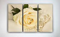 Модульная картина на холсте Роза