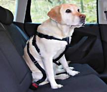 Автомобильный ремень безопасности для собак Trixie, M