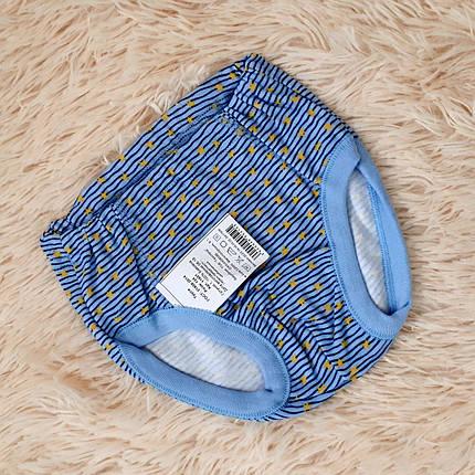 Трусики для мальчика голубые в звездочки (Украина) Татошка размер 134, фото 2