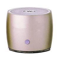 Колонка Bluetooth EWA A103 Gold