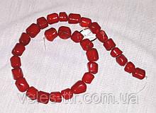 Бусы на леске  Коралл красный Галтовка столбик 15х12  мм нить 41 см