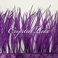 Страусиная перьевая тесьма 8-11см Purple 1м