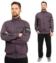 Мужской спортивный костюм трикотажный воротник стойка, брюки прямые, фиолетовый