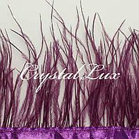 Страусиная перьевая тесьма 8-11см Deep purple 1м