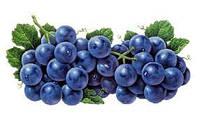 Пищевой ароматизатор Виноград Изабелла (Россия)  1 л