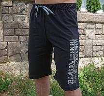 Мужские спортивные  шорты (50,52 ,54,56) синие, графит