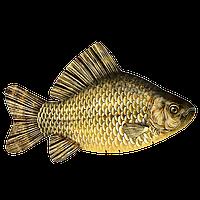 Антистрессовая подушка-игрушка «Рыба Карась» (большой). Размер: 60*30 см.