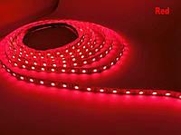 Светодиодная лента LED 5050 - 12W Blue, Green, Red, White | лед лента синяя, зеленая, красная, белая, фото 1