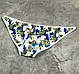 Пляжные плавки с ярким принтом  SW1924148, фото 2