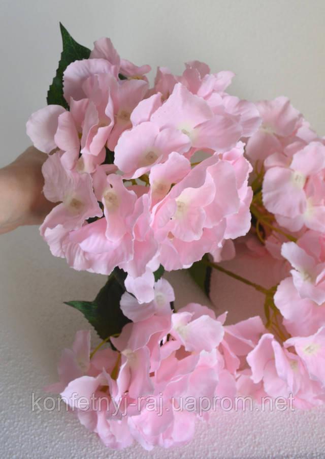 Головка гортензии розовая