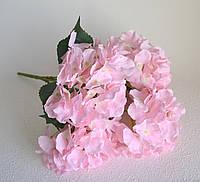 Гортензия ветка на 5 головок розовые, фото 1