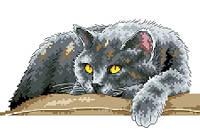 """Набор для вышивки на канве с нитками крестиком """"Кот"""". Размер 17х23 см."""