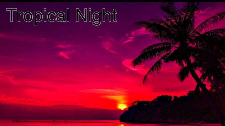Tropical night 10мл, фото 2