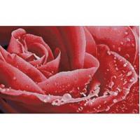 """Роза в росе. Honey Home"" Набор для рисования камнями"