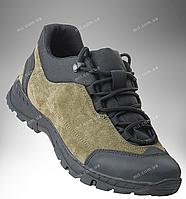 fd4f6522 Летние тактические кроссовки Trooper CROC (olive)|военная обувь, летние  военные