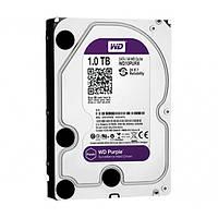 Жесткий диск Western Digital 1Тб WD10PURX