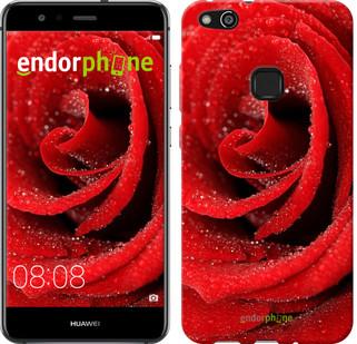 """Чехол на Huawei P10 Lite Красная роза """"529u-896-571"""""""