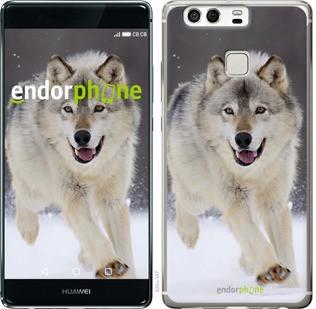 "Чехол на Huawei P9 Бегущий волк ""826c-347-571"""