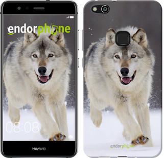 "Чехол на Huawei P10 Lite Бегущий волк ""826u-896-571"""