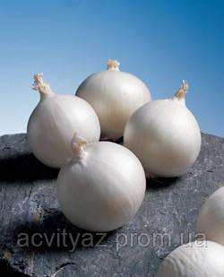 Семена Лук Гладстон / Gladstone, 250 тыс. семян