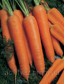 Семена Морковь Наполи F1 / Napoli F1, (1, 6-1, 8 мм), 1 млн. семян