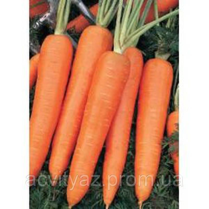 Семена Морковь Камаран F1 / Kamaran F1, (1, 6-1, 8 мм), 1 млн.семян