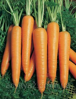 Семена Морковь Вита Лонга / Vita Longa, 50 гр.